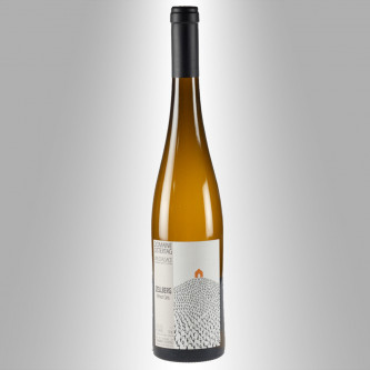 PINOT GRIS ZELLBERG 2015 - ANDRÉ OSTERTAG